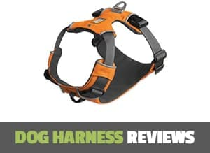 dog harness reviews page