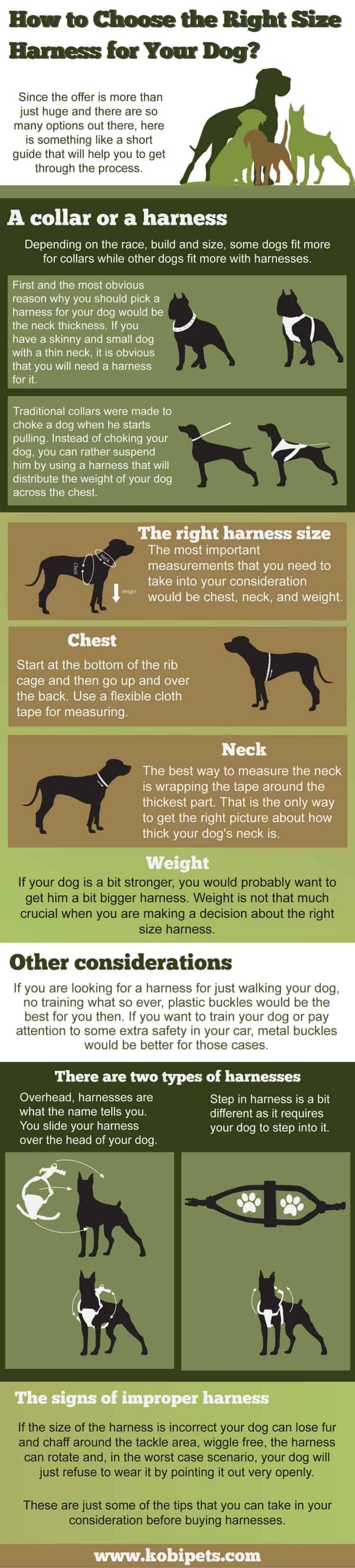 How-to-Choose-the-Right-Size-Harness-for-Your-Dog (infographic)