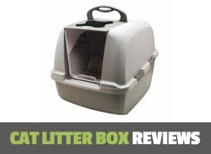 cat litter box reviews page