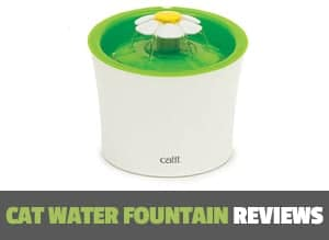 cat water fountain reviews page