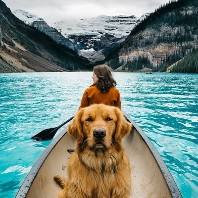 girl traveling with her loyal companion