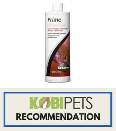 prime nitrate remover - kobi recommends