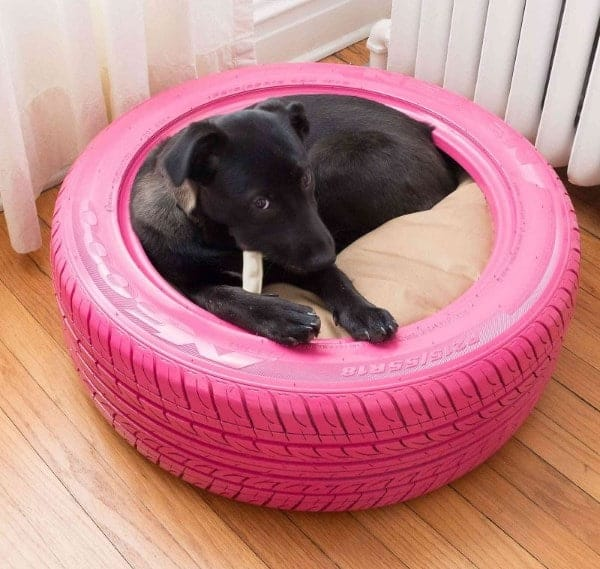 DIY-pet-Bed-From-A-Tire
