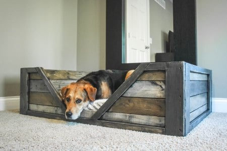 wooden bed for pet