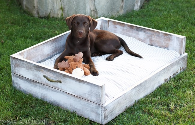 wooden dog bed idea