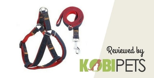 image-of-URPOWER-Dog-Leash-Harness