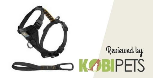 kurgo-tru-fit-walking-harness-review