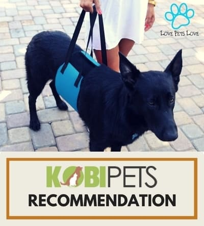 love pets love mobility harness - our recommendation
