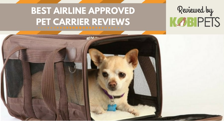 best airline approved pet carriers - featured img