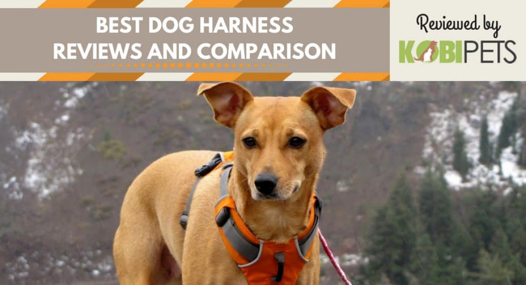Best Dog Harness Reviews By Kobi Pets Top Rated Products