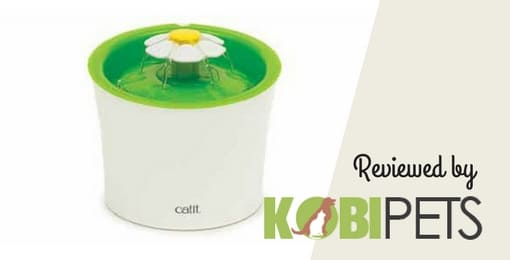 catit-flower-fountain-review