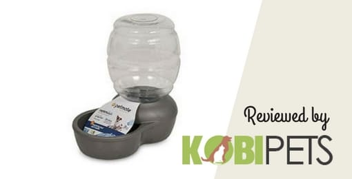 petmate-replendish-gravity-waterer-review