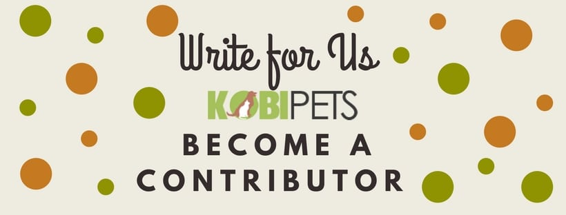 write for us - kobi pets