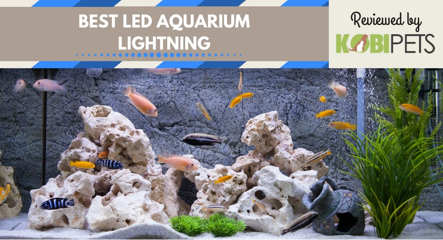 best led aquarium lightning - featured image