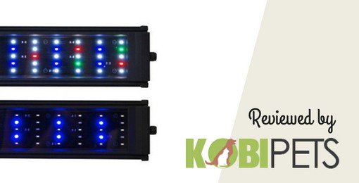 image of Beamswork DA FSPEC LED Aquarium Light