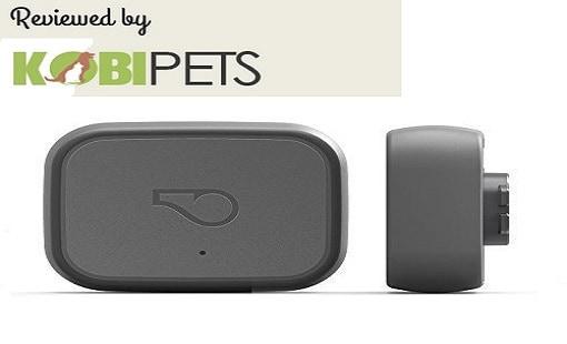 Whistle 3 GPS Pet Tracker & Activity Monitor